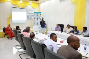 UNDP Somalia workshop capacity building elections